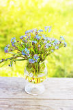 Bouquet of forget-me-not Royalty Free Stock Images