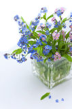 Bouquet of forget-me-nots Stock Photos