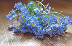Bouquet of forget me nots lying on the wooden table Royalty Free Stock Image