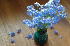 Bouquet of forget me nots in the vase Stock Photos