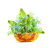 Bouquet of forget-me-nots in a wattled basket Royalty Free Stock Images