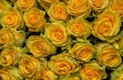 Bouquet fraîchement de grandes roses jaunes de coupe Photo stock