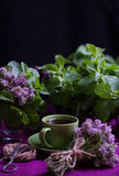 Bouquet of fragrant herbs. Mint and thyme. The style of the dark Royalty Free Stock Image