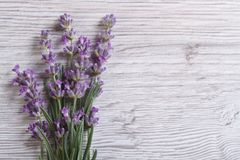 Bouquet of fragrant lavender flowers. floral frame. Bouquet of fragrant lavender flowers on the table close-up horizontal view from the top. floral frame Stock Photos