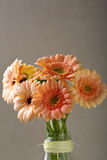 Bouquet frais de gerbera dans le vase en verre image libre de droits