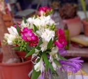 Bouquet of freesia Royalty Free Stock Photos