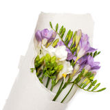 Bouquet of freesia in the paper Stock Photo