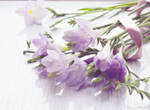 Bouquet of freesias flowers stock photo