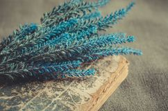 Bouquet of lavender lies on the old book on rough background. Bouquet of fresh blue lavender lies on the old book on rough background Royalty Free Stock Images