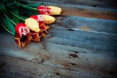 Bouquet of fresh colorful tulips over rustic wooden background. Royalty Free Stock Photography