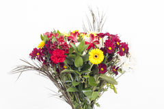 Bouquet. A fresh bouquet of colourfull flowers Royalty Free Stock Photos