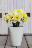 Bouquet of fresh daffodils in white ceramic vase Stock Image