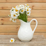 Bouquet of fresh  daisies in hite jug on wooden background Royalty Free Stock Photos