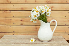 Bouquet of fresh daisies in hite jug on wooden background Stock Photos