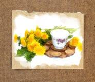 A bouquet of fresh dandelions yellow hats  near a tea pair from. A bouquet of fresh dandelions yellow hats near tea pair from a saucer cup of Old porcelain Stock Photos