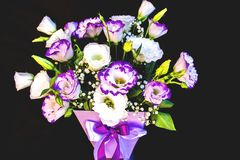 Bouquet of fresh eustoma in cream and purple colors on the black wall background royalty free stock photos