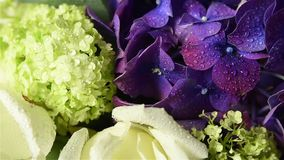 Bouquet of fresh flowers stock footage