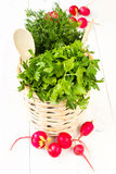 A bouquet of fresh greens with radish in a bowl wicker basket o. A bouquet of fresh different vegetables in a bowl wicker basket on white wooden background Stock Images
