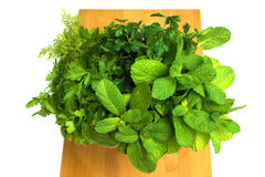 Bouquet of fresh herbs Royalty Free Stock Photo