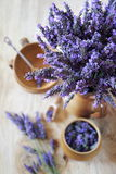 Bouquet of fresh lavender Stock Photography