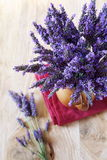 Bouquet of fresh lavender Royalty Free Stock Images