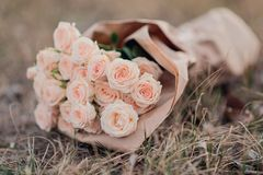 Bouquet of fresh light orange roses in craft paper. stock image
