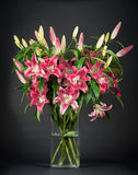 Bouquet of fresh lily flowers on black Stock Images