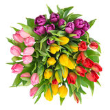Bouquet of fresh multicolor tulips Stock Photography