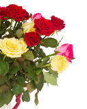 Bouquet of fresh multicolored  roses Stock Photography
