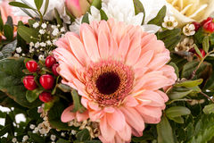 Bouquet of fresh pink and white flowers Stock Photo