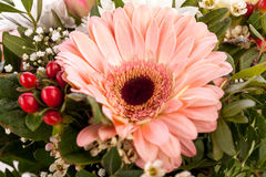 Bouquet of fresh pink and white flowers Royalty Free Stock Images