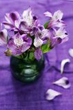 A bouquet of fresh purple flowers in a green vase on a purple background of flax Royalty Free Stock Images