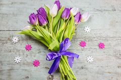 Bouquet of fresh purple tulips to celebrate Spring. Bouquet of fresh purple tulips tied with a decorative bow and ribbon surrounded by daisy decorations on a Royalty Free Stock Photo