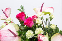 Bouquet from fresh red roses and  anthurium Stock Photo