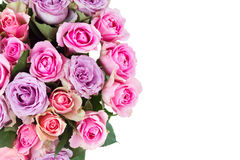Bouquet of fresh roses Stock Photo