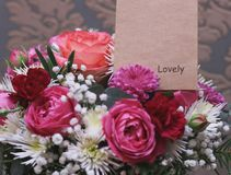 Bouquet of fresh roses royalty free stock image