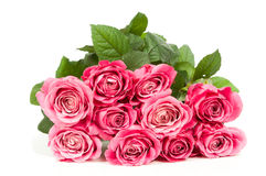 Bouquet of fresh roses Stock Image