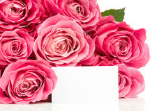 Bouquet of fresh roses Royalty Free Stock Images