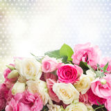 Bouquet of fresh roses Royalty Free Stock Photos