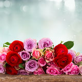Bouquet of fresh roses and ranunculus. On wood border with copy space on blue bokeh background Stock Photography