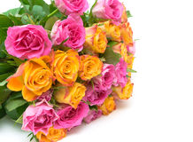 Bouquet of fresh roses on a white background Royalty Free Stock Photography