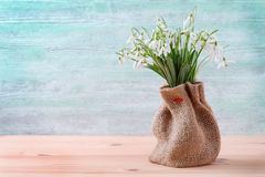Bouquet of fresh snowdrops flowers in a sack on wooden and vintage background, horisontal Royalty Free Stock Image
