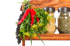 Bouquet of fresh spice Royalty Free Stock Photos