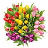 Bouquet of fresh spring tulip flowers isolated on white backgrou Stock Photo