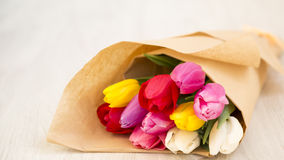 Bouquet of fresh spring tulips Royalty Free Stock Images