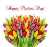 Bouquet fresh spring tulips flowers Happy Mothers Day Royalty Free Stock Photos