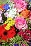 Bouquet of fresh Summer Flowers Royalty Free Stock Photos