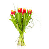 Bouquet of the fresh tulips. On white background(With sample text Royalty Free Stock Photography