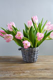Bouquet of fresh tulips Stock Images