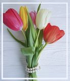 Bouquet of fresh tulips holiday springtime celebration composition beautiful white wooden background romantic. Bouquet of fresh tulips white wooden background stock photos